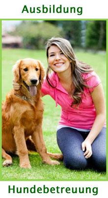 Ausbildung Hundebetreuung