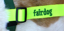 fairdog-Schleife